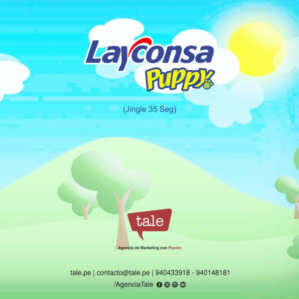 layconsa